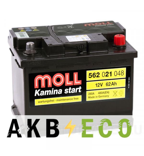 Автомобильный аккумулятор Moll Kamina Start 62R 520A (242x175x190)