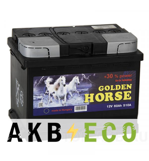 Автомобильный аккумулятор Golden Horse 60L 510А 242x175x190