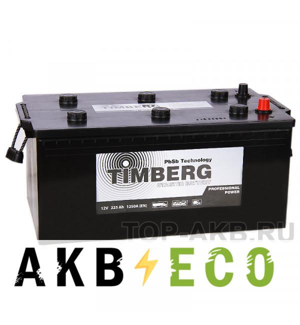 Грузовой аккумулятор Timberg Truck 225 евро 1250A 518x273x223