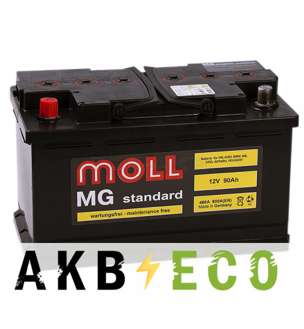 Автомобильный аккумулятор Moll MG Standard 90L 800A 315x175x190