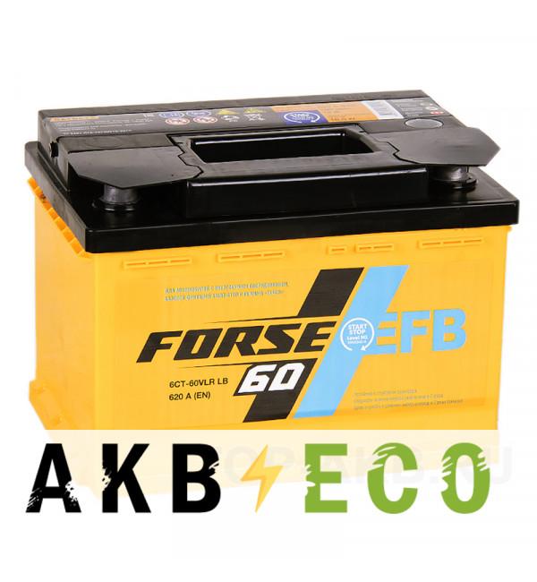 Автомобильный аккумулятор Forse EFB 60R низкий 600A (242x175x175) Start-Stop