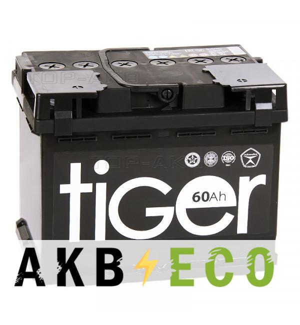 Автомобильный аккумулятор Tiger 60R 480A 242x175x190