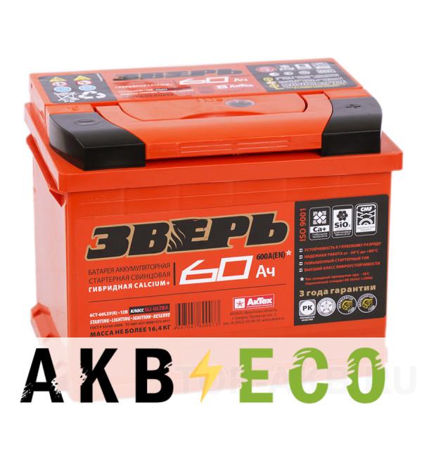 Автомобильный аккумулятор Зверь 60R 600A 242x175x190