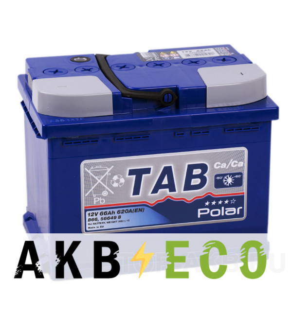 Автомобильный аккумулятор Tab Polar 66R (620A 242x175x190) 121066 56649