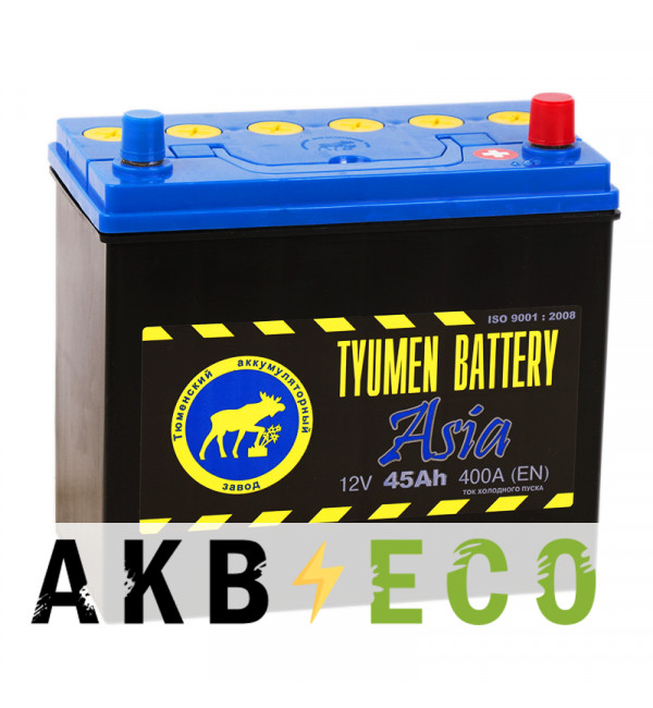 Автомобильный аккумулятор Tyumen Battery Asia 45 Ач обр. пол. 400A (238x129x227)