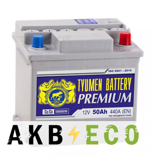 Автомобильный аккумулятор Tyumen Battery Premium 50 Ач обр. пол. 440A (207x175x190)
