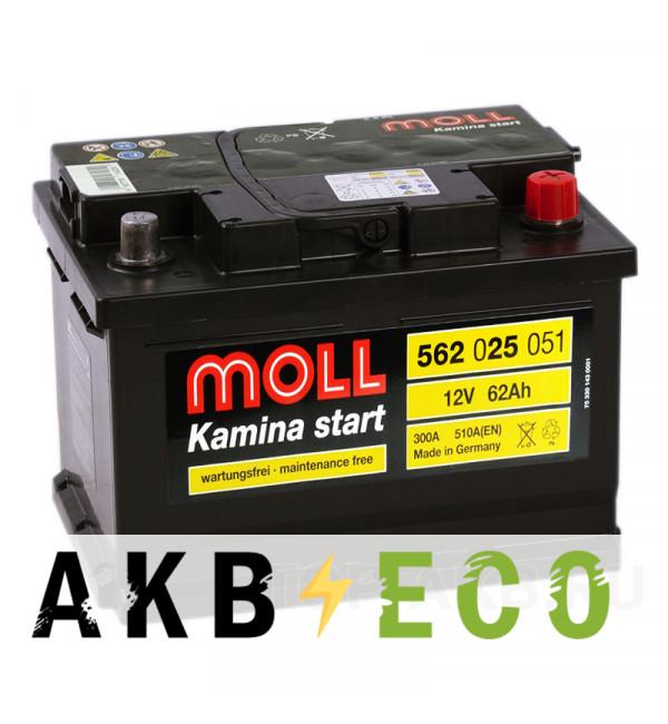 Автомобильный аккумулятор Moll Kamina Start 62SR низкий 510A (242x175x175)