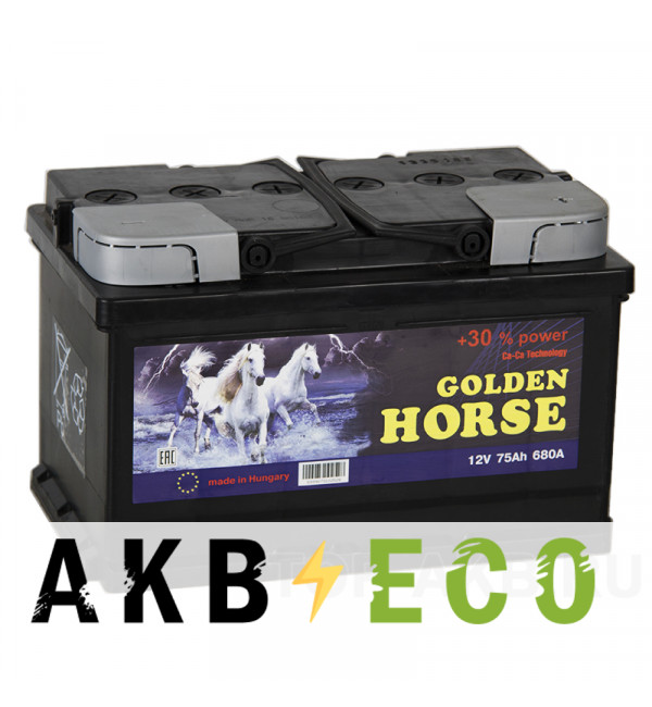 Автомобильный аккумулятор Golden Horse 75R низкий 680А 278x175x175