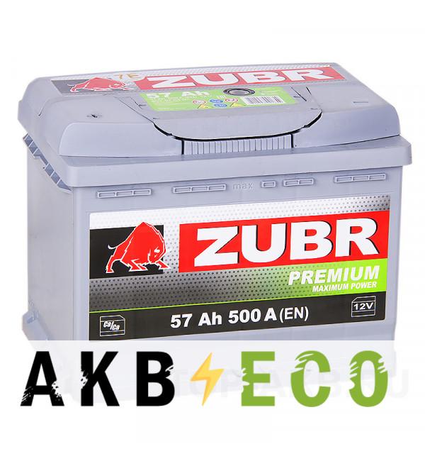 Автомобильный аккумулятор ZUBR Premium 57L 500A (242x175x190)