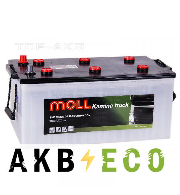 Автомобильный аккумулятор MOLL Super Heavy Duty 225 Ah 1150A (518x276x242)