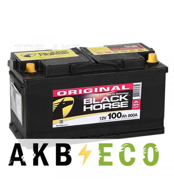 Автомобильный аккумулятор Black Horse 100L 800A 353x175x190