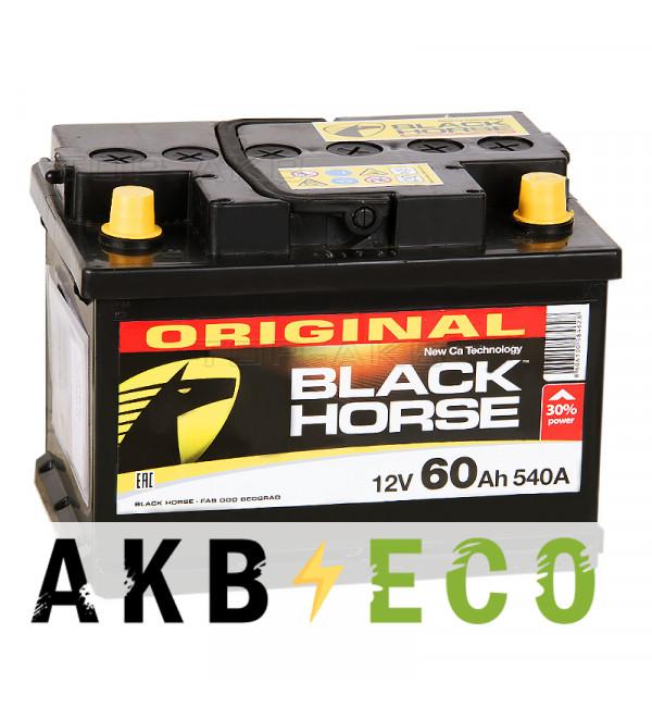 Автомобильный аккумулятор Black Horse 60 Ач 540A обр. пол. низкий (242x175x175)