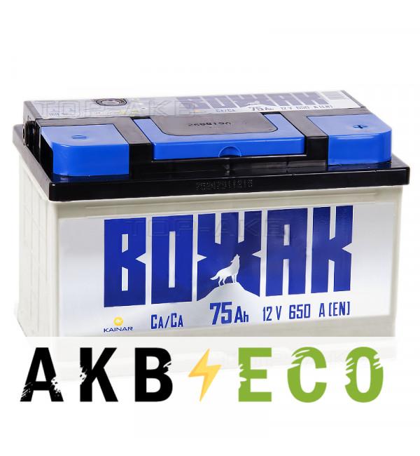 Автомобильный аккумулятор Вожак 75R низкий 650A 278x175x175