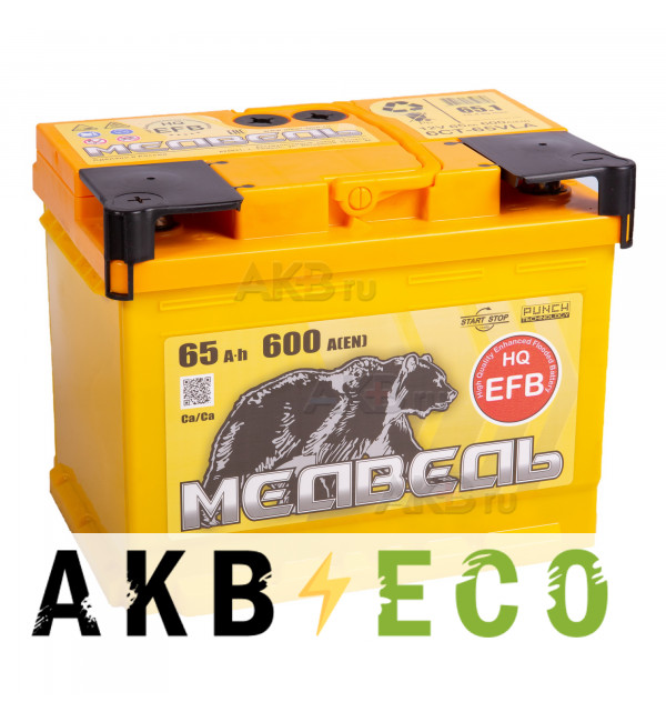 Автомобильный аккумулятор Тюменский медведь EFB 65 Ач обр. пол. 600A (242x175x190)