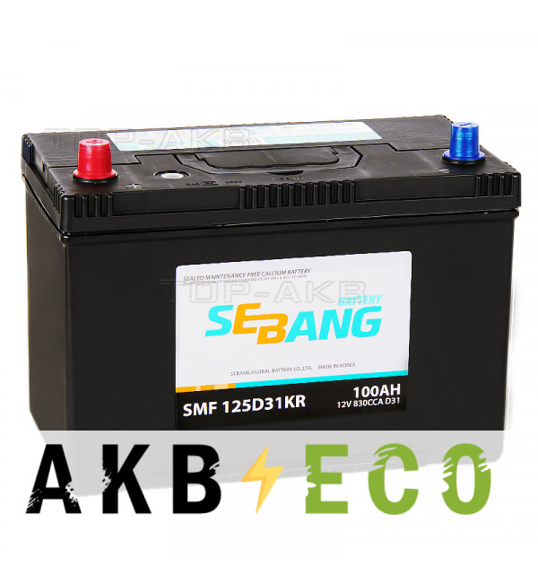 Автомобильный аккумулятор Sebang 125D31KR 100 Ач прямая пол. 830А (306x173x225)