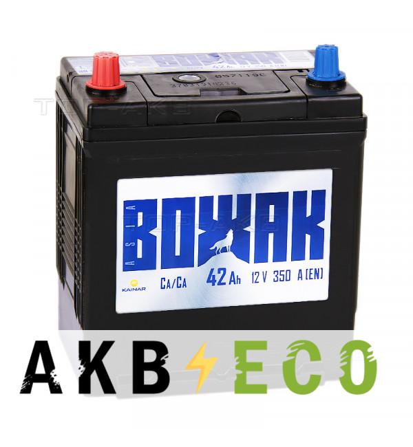 Автомобильный аккумулятор Вожак Asia 42L 350A (187x127x227)