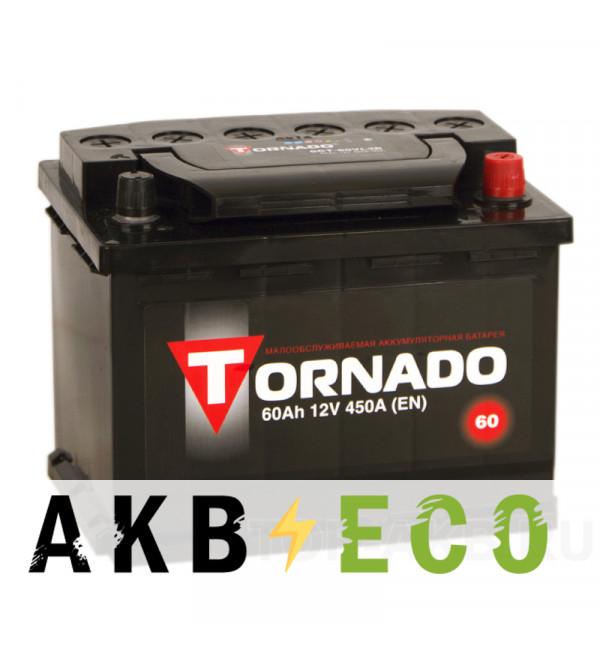 Автомобильный аккумулятор Tornado 60L 450A 242x175x190
