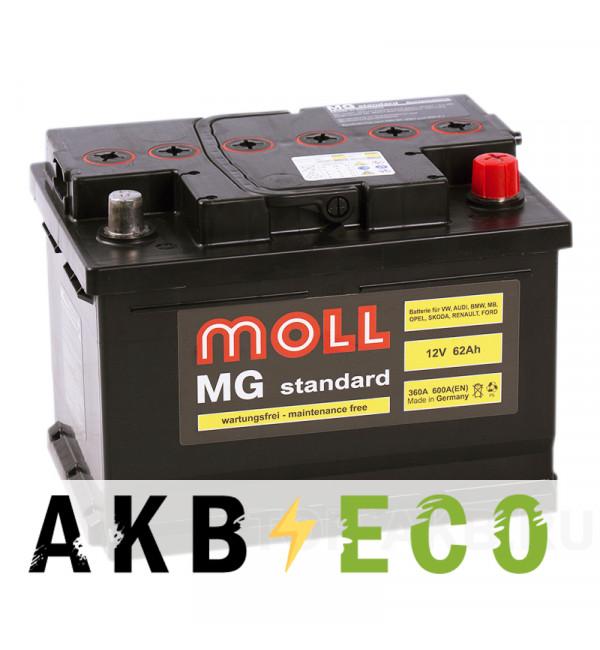 Автомобильный аккумулятор Moll MG Standard 62 SR 600A 242x175x175