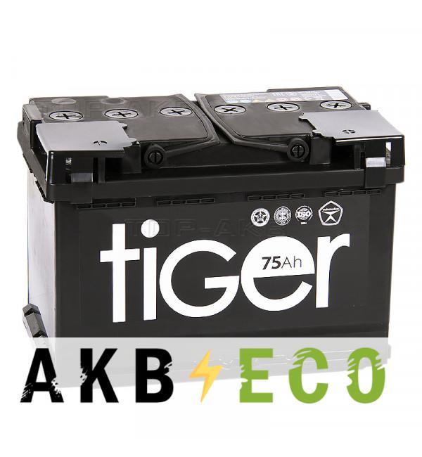 Автомобильный аккумулятор Tiger 75R 620A 278x175x190