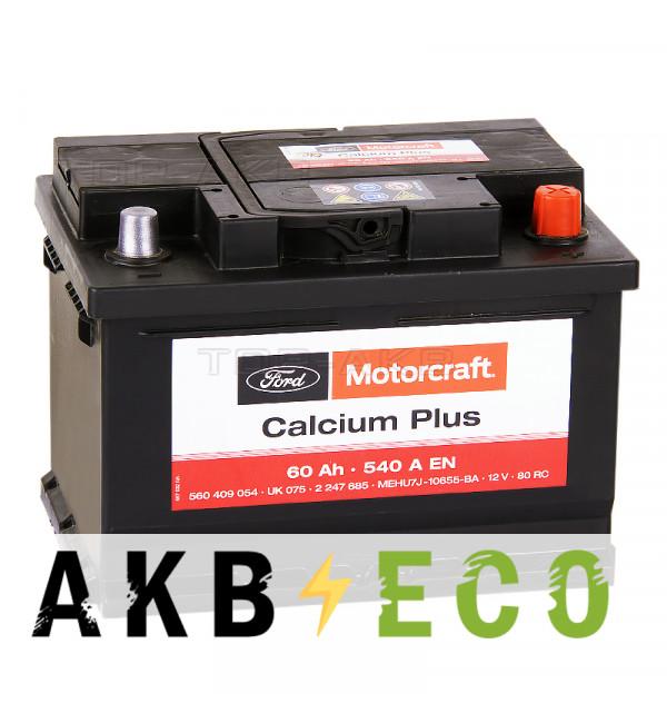 Автомобильный аккумулятор Motorcraft Calcium Plus (FORD) 60 Ач обратная пол. 540А (242x175x175)