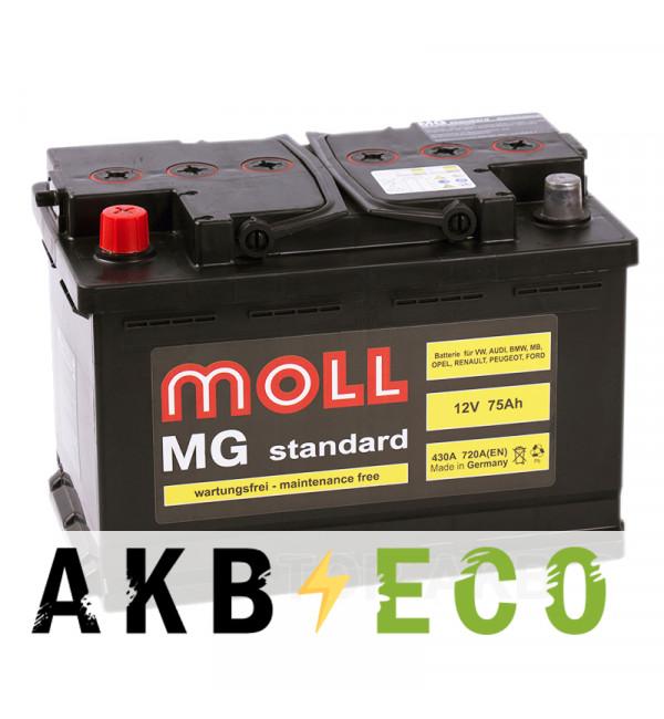 Автомобильный аккумулятор Moll MG Standard 75L 720A 276x175x190