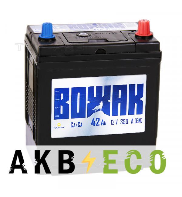 Автомобильный аккумулятор Вожак Asia 42R 350A (187x127x227)