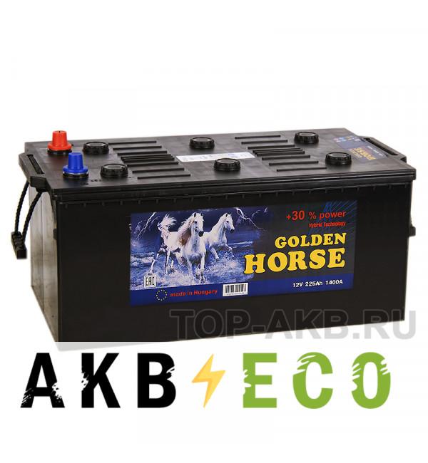 Автомобильный аккумулятор Golden Horse 225 евро 1400А 517х273х240