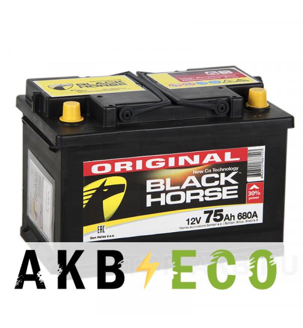 Автомобильный аккумулятор Black Horse 75R 680A 278x175x190