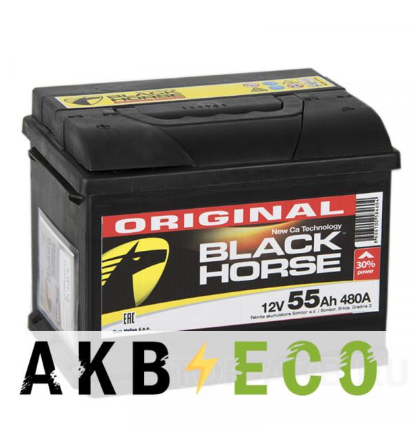 Автомобильный аккумулятор Black Horse 55L 480A 242x175x190