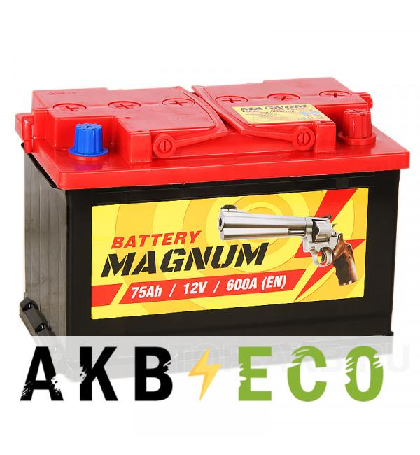 Автомобильный аккумулятор Magnum 75R 600A 278x175x190