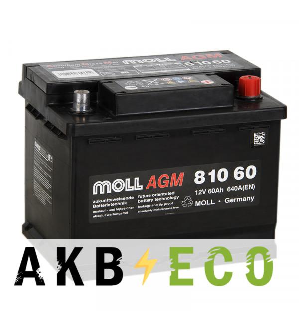 Автомобильный аккумулятор Moll AGM 60R Start-Stop 640A 242x175x190