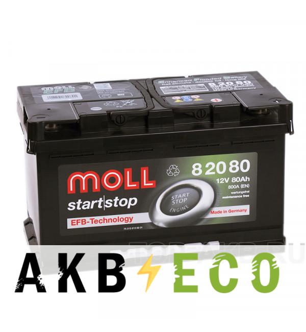 Автомобильный аккумулятор Moll EFB 80R Start-Stop 800A 315x175x190