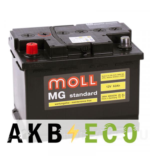 Автомобильный аккумулятор Moll MG Standard 62L 600A 242x175x190