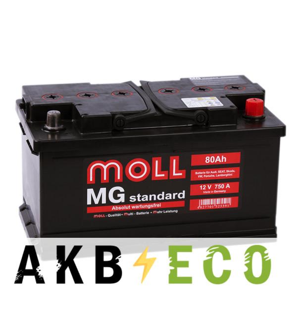 Автомобильный аккумулятор Moll MG Standard 80 SR 750A 315x175x175