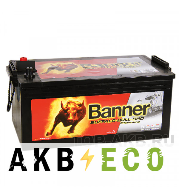 Автомобильный аккумулятор BANNER Buffalo Bull SHD PROfessional (725 03) 225 евро 1150A 517x273x240