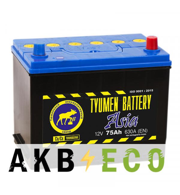 Автомобильный аккумулятор Tyumen Battery Asia 75 Ач обр. пол. 630A (266x173x225)