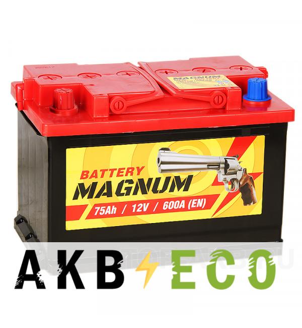 Автомобильный аккумулятор Magnum 75L 600A 278x175x190