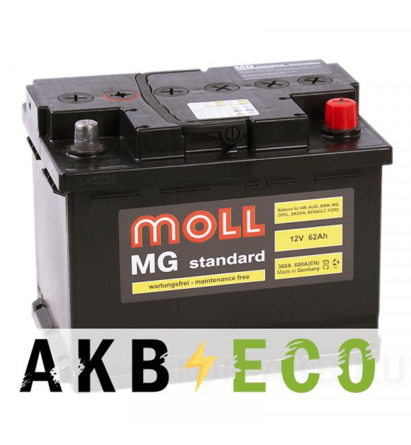 Автомобильный аккумулятор Moll MG Standard 62R 600A 242x175x190