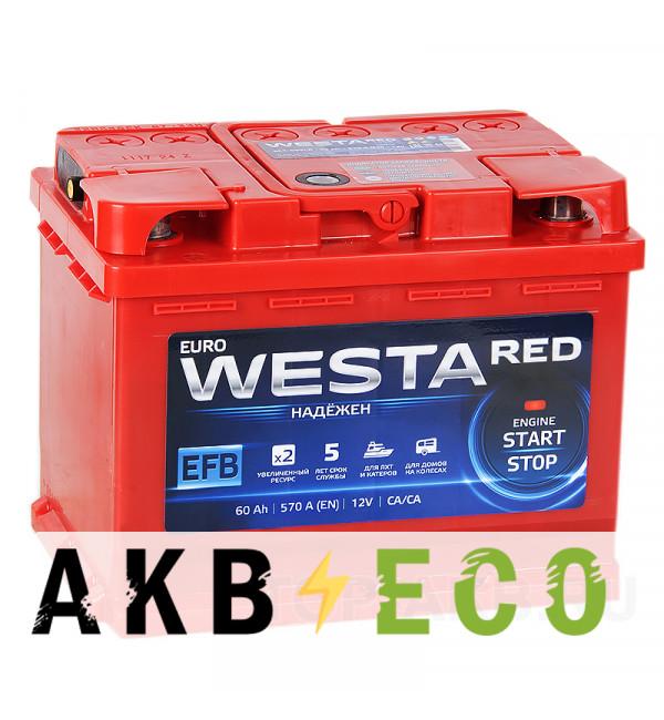 Автомобильный аккумулятор Westa RED EFB 60L 570A (242x175x190)
