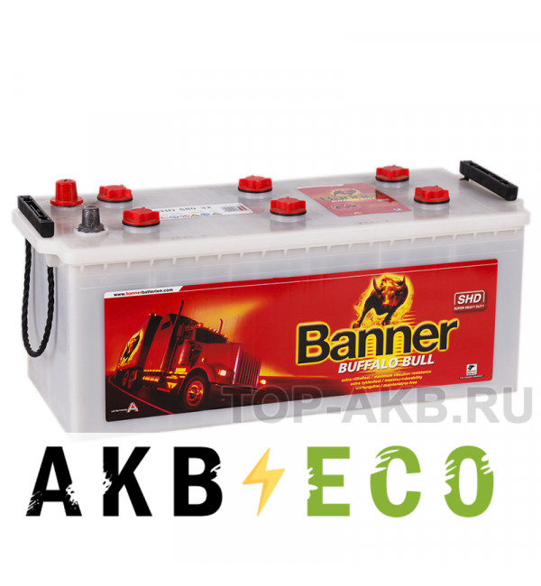 Автомобильный аккумулятор BANNER Buffalo Bull SHD (680 32 N) 180 евро 1000A 514x223x220