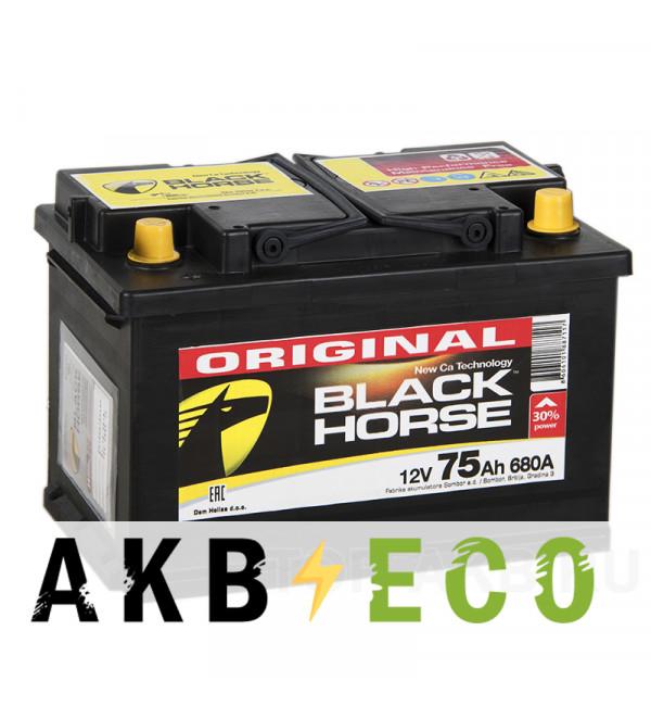 Автомобильный аккумулятор Black Horse 75L 680A 278x175x190