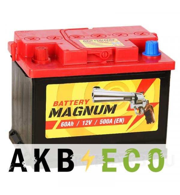 Автомобильный аккумулятор Magnum 60L 500A 242x175x190
