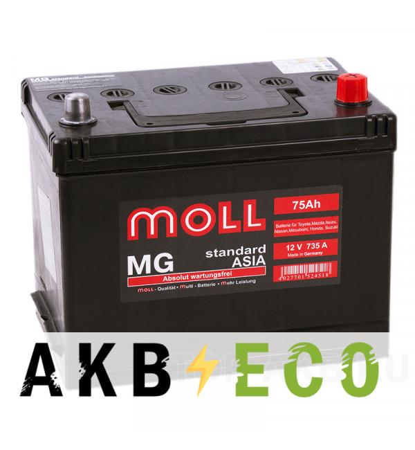 Автомобильный аккумулятор Moll MG Standard Asia 75R 735A 250x170x220