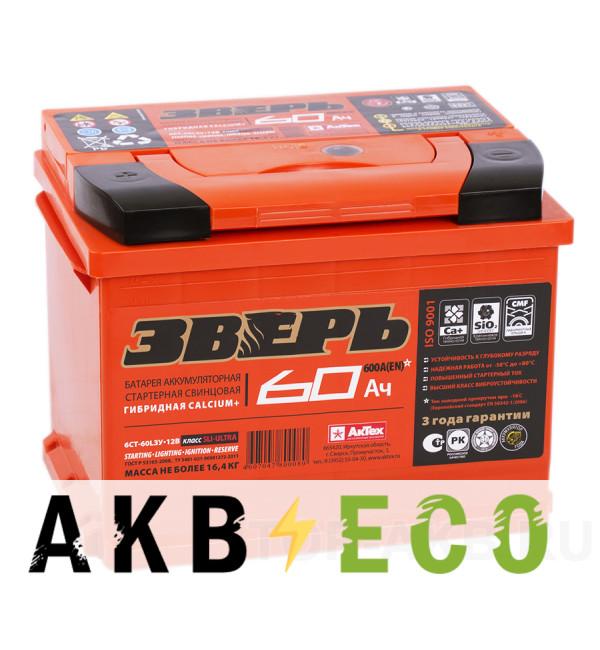 Автомобильный аккумулятор Зверь 60L 600A 242x175x190