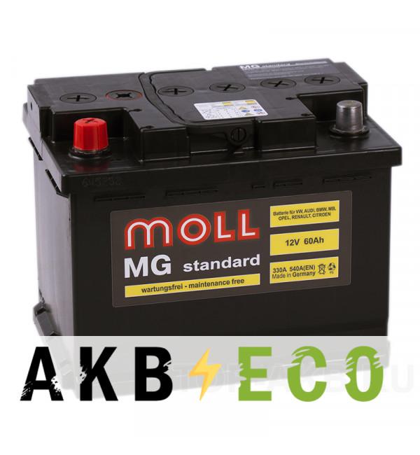 Автомобильный аккумулятор Moll MG Standard 60L 540A 242x175x190