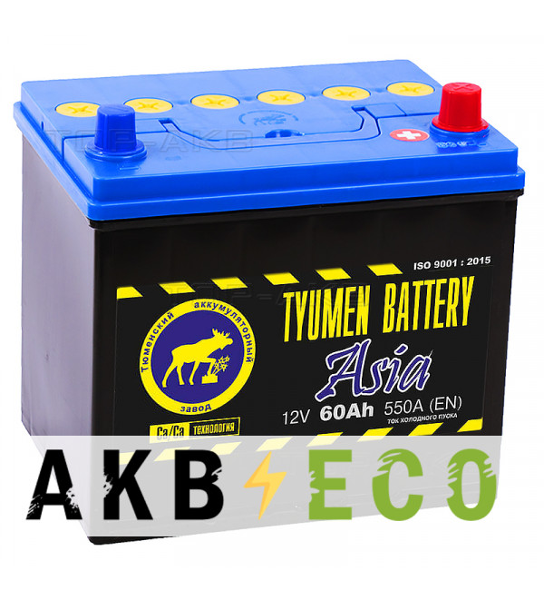 Автомобильный аккумулятор Tyumen Battery Asia 60 Ач обр. пол. 550A (232x173x225)
