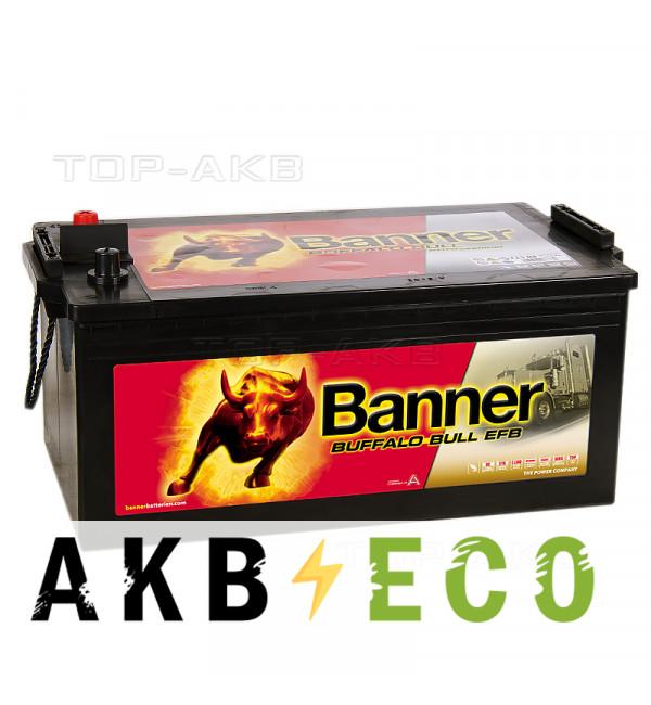 Грузовой аккумулятор BANNER Buffalo Bull EFB (740 17) 240 евро 1200A 517x273x240