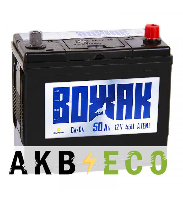Автомобильный аккумулятор Вожак Asia 50R 450A (238x129x227) конус переходник