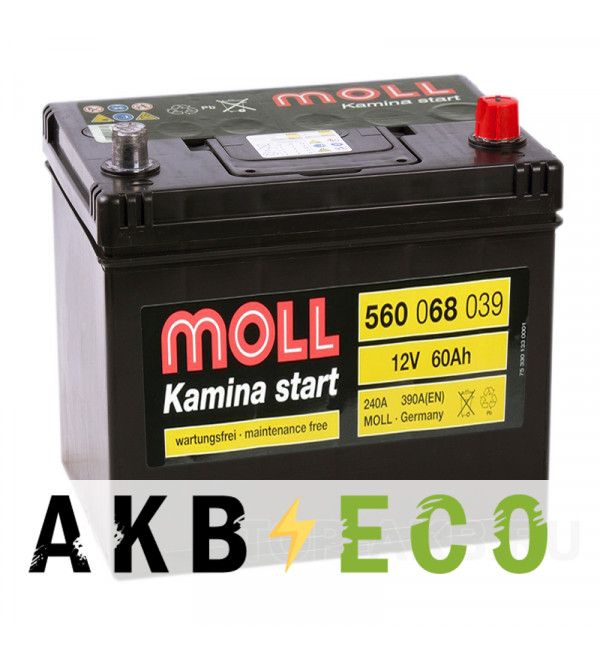Автомобильный аккумулятор Moll Kamina Start Asia 60R 390A (230x170x225)