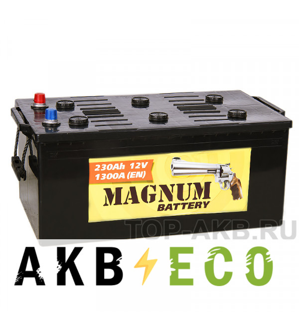 Автомобильный аккумулятор Magnum 230 евро 1350A 517x273x240